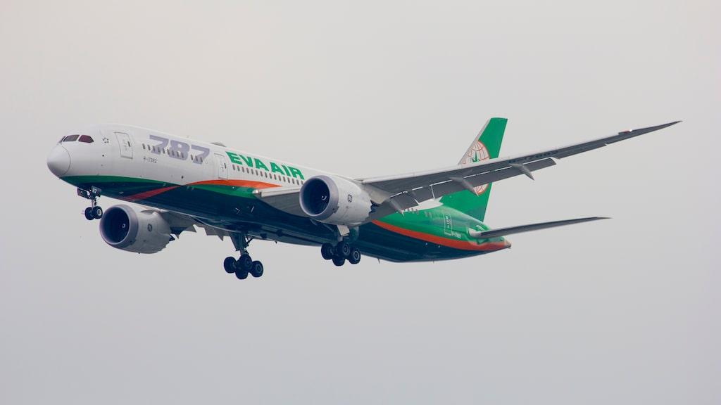 Taiwanbaserade EVA Air blev världens tredje bästa flygbolag enligt Tripadvisor.