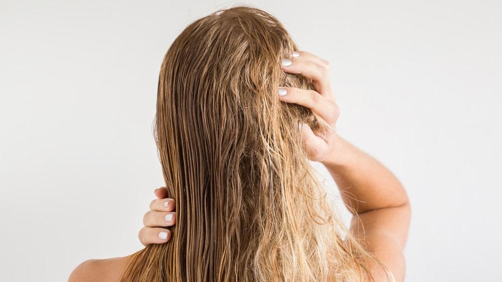Torrt hår går att motverka med återfuktande schampo och balsam.