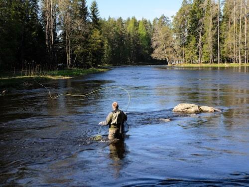 Fina fiskevatten i Ångermanland.