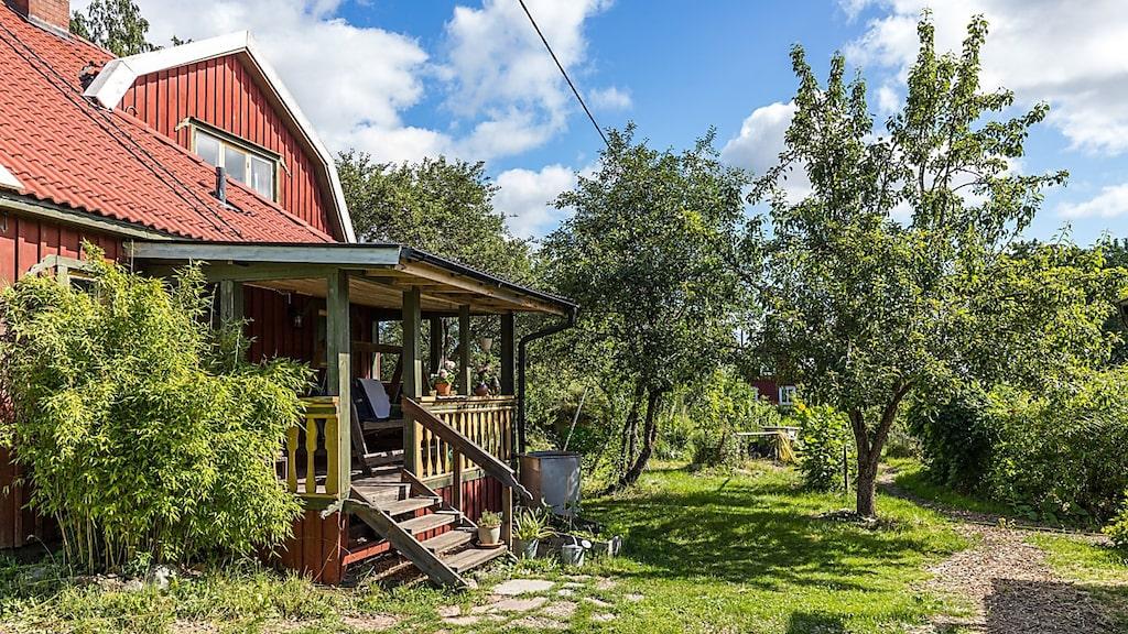 Drömmer du om ett nytt liv, bo på landet och vara självförsörjande? Kanske har du inspirerats av Mandelmanns på TV4?