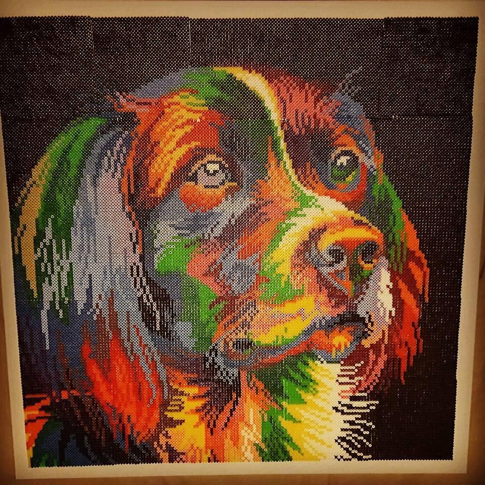 Desirée har pärlat efter ett foto på en vacker hund som hon hittade på nätet.