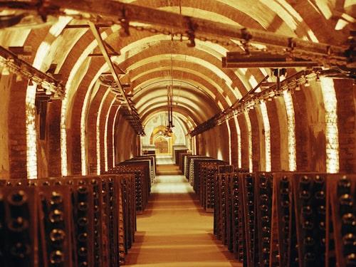 Ett av Champagnes många spännande källarvarv