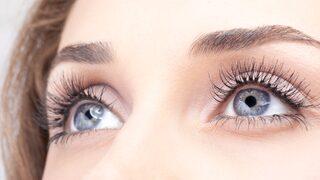 hur många ögonfransar har man