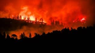 Vetenskap skogsbrander har stor paverkan pa klimatet