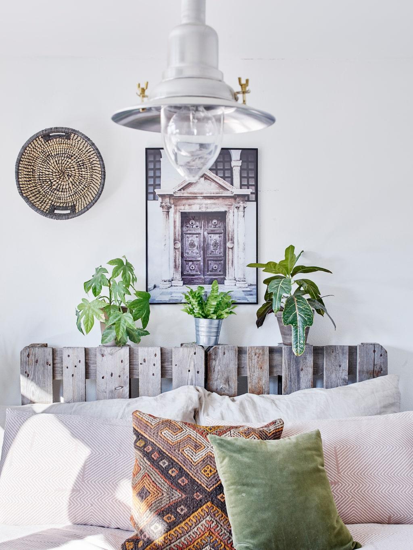 En gammal, grånad lastpall har förvandlats till en vacker sänggavel. Den pryds av gröna växter som ger sovrummet en frodig känsla. Fotografiet Hodor är taget av Patricia Dacic. Lampan kommer från Ikea.