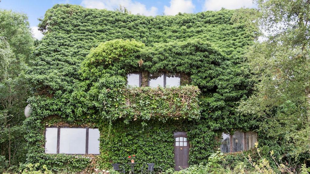 Det här huset kan vara det mest fantastiska vi har sett på länge...