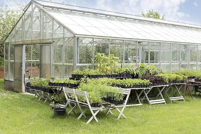I växthuset kan man odla grönsaker och göra egen must.