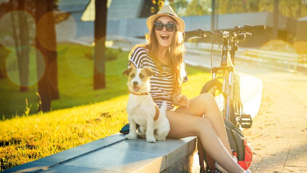 Hundar kan fort bli dåliga i värmen, här är tips på hur du förebygger värmeslag.