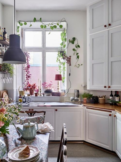 Hörnskåpet tillhör lägenhetens originalinredning. Resten av köket har moderniserats på 1950-talet. Mintgrön tekanna från Patriks prylar. Taklampor, Ikea. Dragspelslampa köpt i Tyskland. Diskställ i mässing, Lagerhaus. Fönsterlampa, loppis.