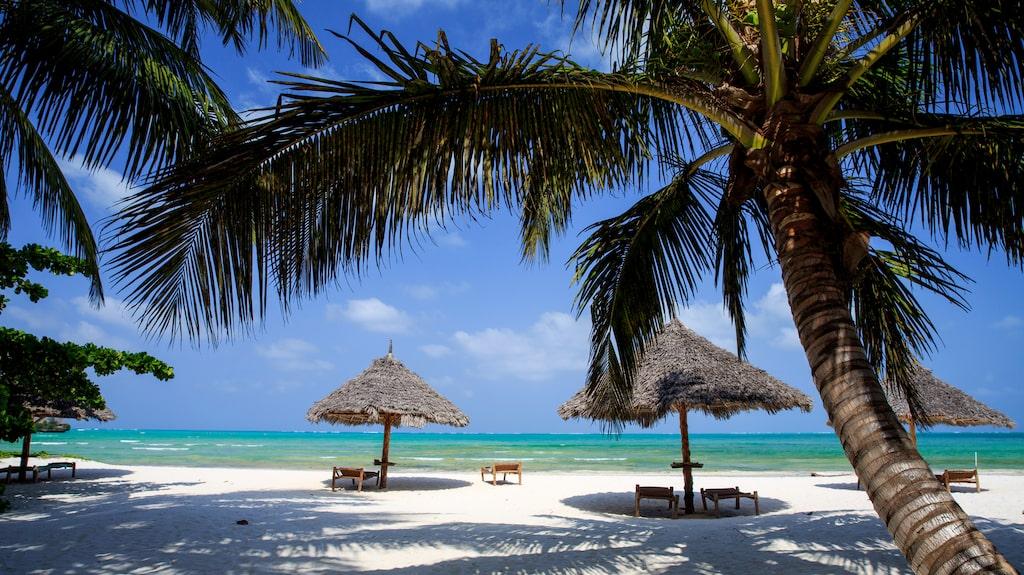 Paradisisk lyx på Bwejuu Beach på Zanzibar.
