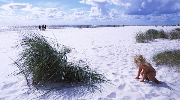 Den breda och kritvita stranden på Dueodde anses vara en av de bästa i norra Europa.