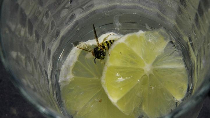 Som tur är finns det att knep som göra att getingarna håller sig bort.