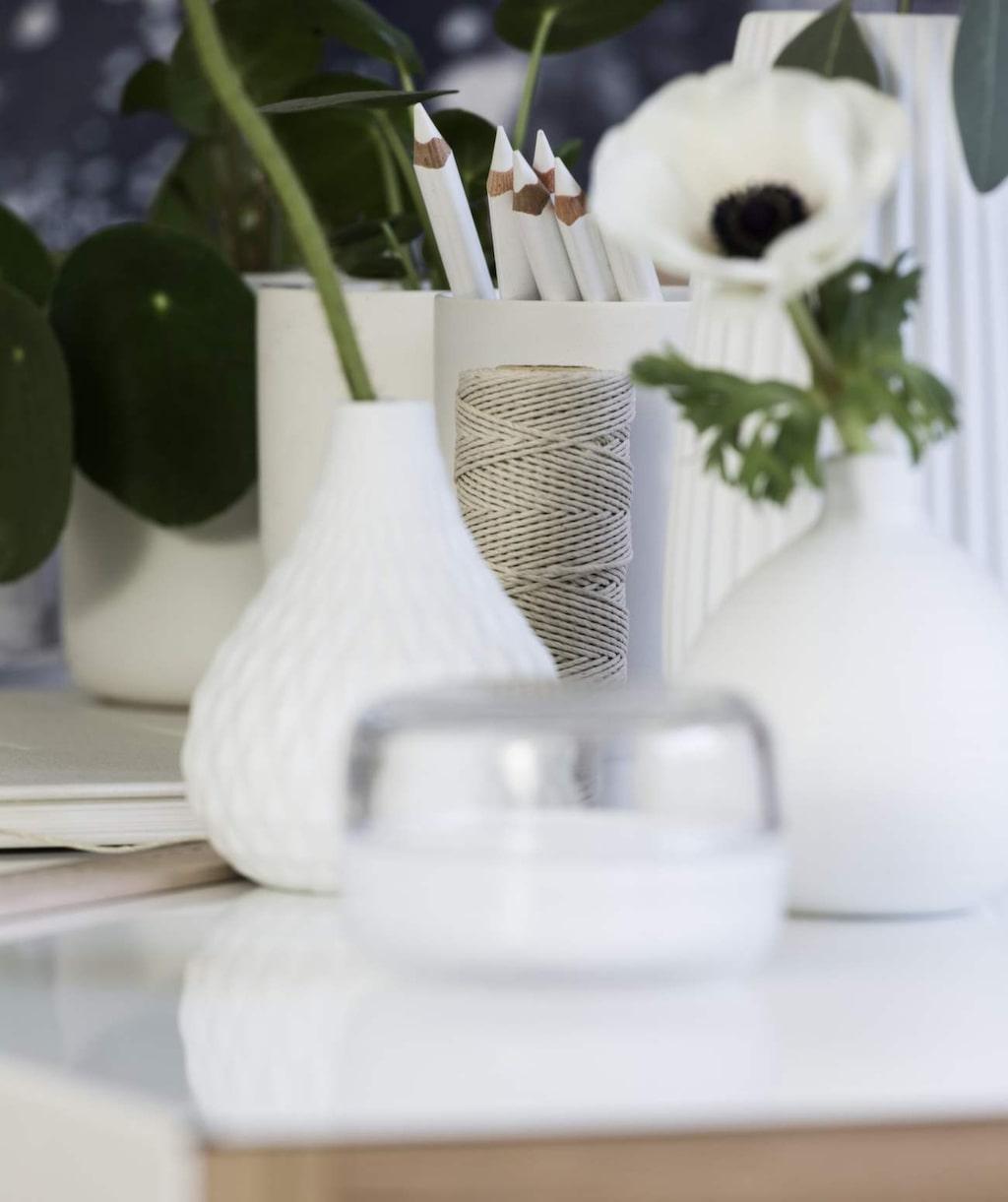 Tidlöst i vitt. Glassak, 150 kronor, liten vit vas med prickar, 125 kronor, liten vit vas Romb, 125 kronor, högre vas, 195 kronor, allt från Designtorget. Växt från Floristkompaniet.