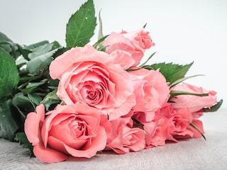 ska rosor ha varmt vatten