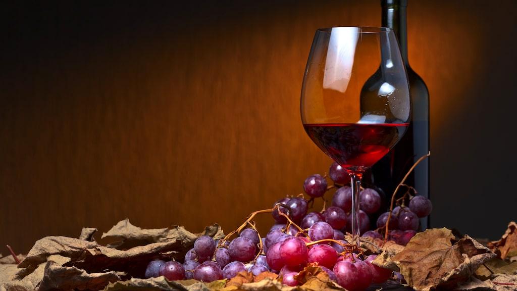 Nyttigheten – antioxidanterna – sitter i skalet.
